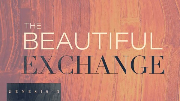 The Beautiful Exchange